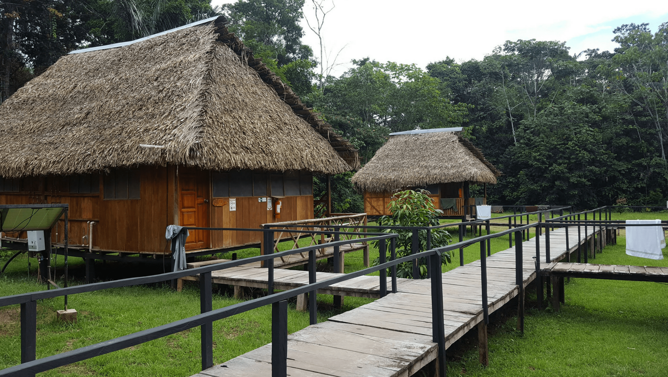 green forest lodge