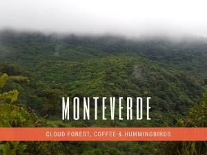 How to Travel from San Jose to Monteverde Costa Rica (The Best Way 2020)