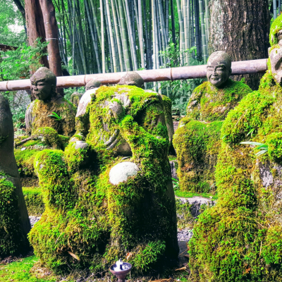 5 Most Instagrammable Things to do in Kyoto: Best Photo Spots in Kyoto