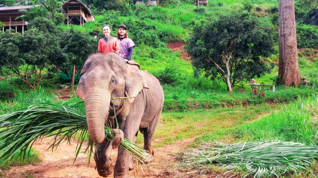 An-image-showing-a-couple-riding-elephants-in-Chiang-Mai