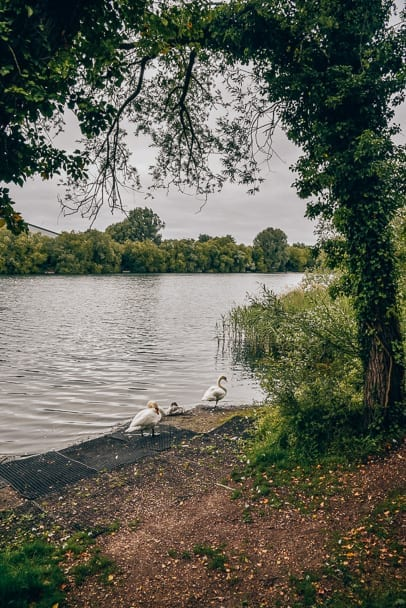 Milton-Country-Park-fishing