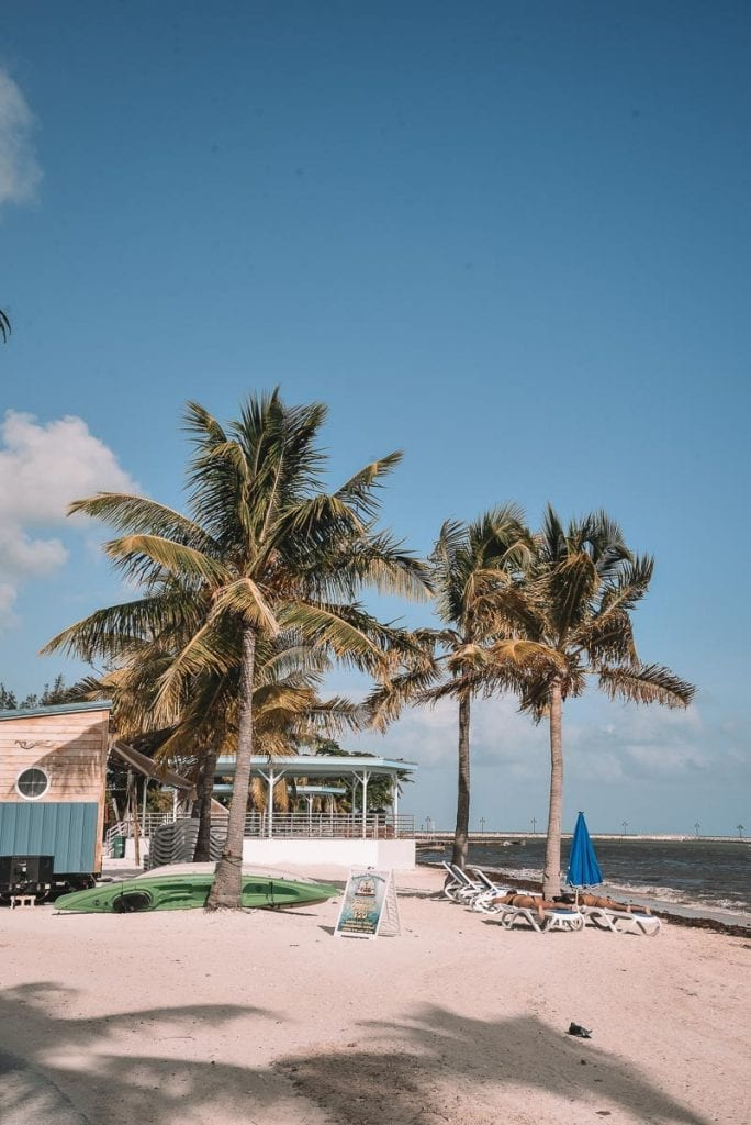 key-west-beaches-higgs-beach