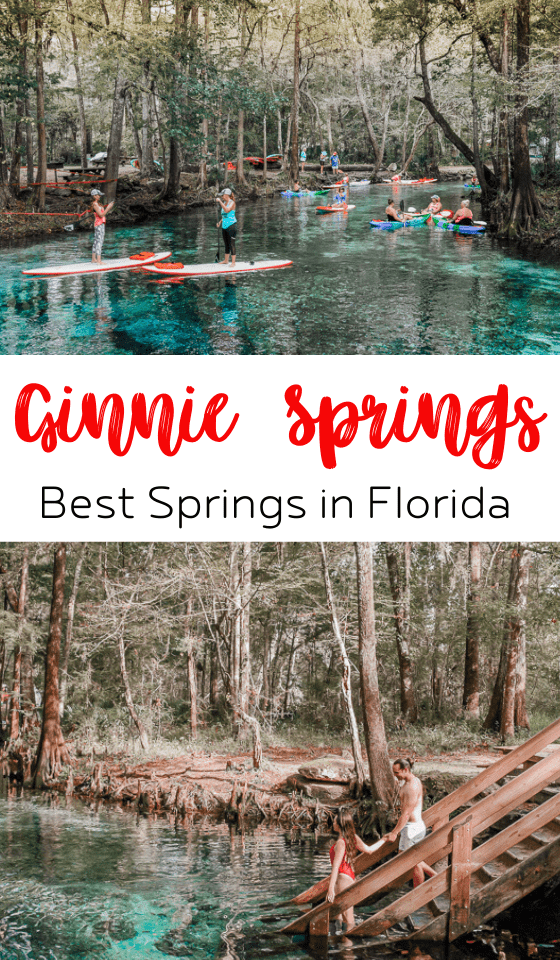 ginnie-springs-tubing-florida