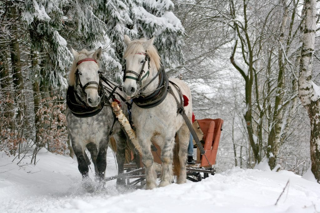 christmas-date-idea-sleigh-ride