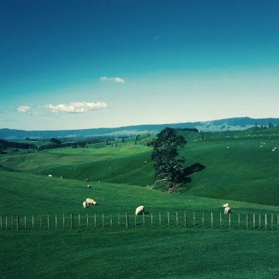 New Zealand Honeymoon: Romantic Things to do South and North Island