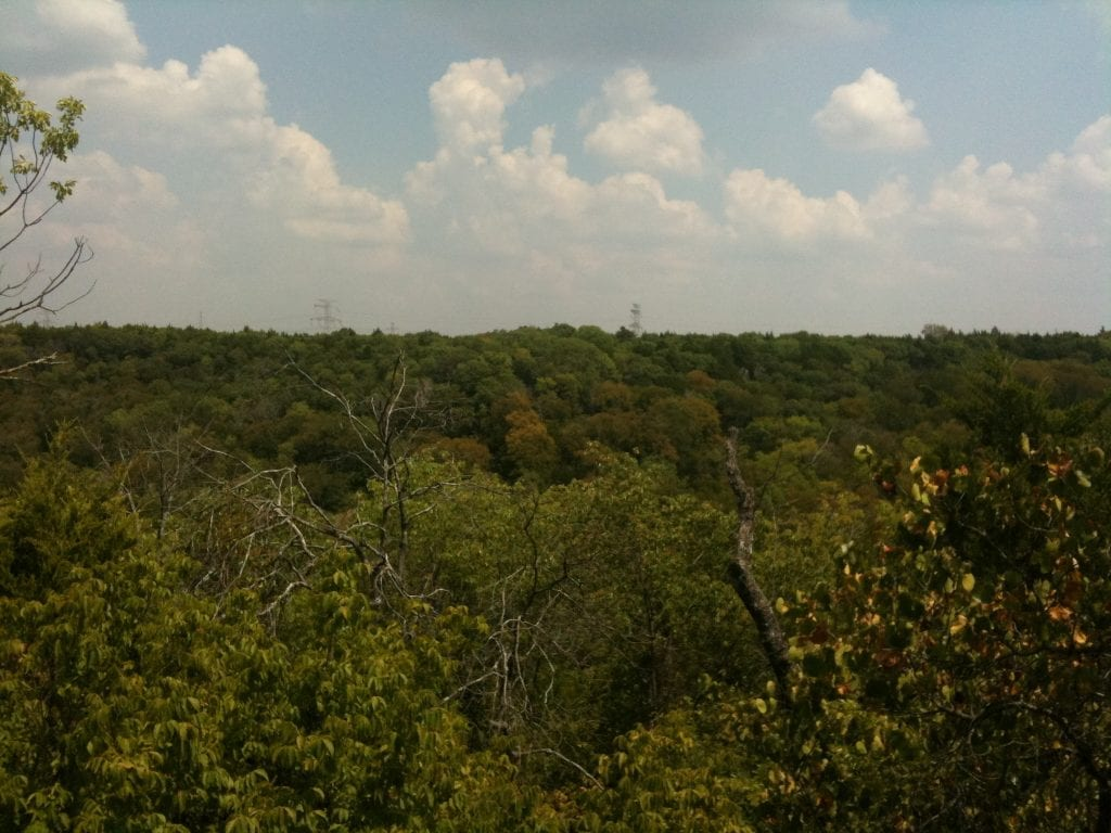 Cedar Ridge Nature Preserve
