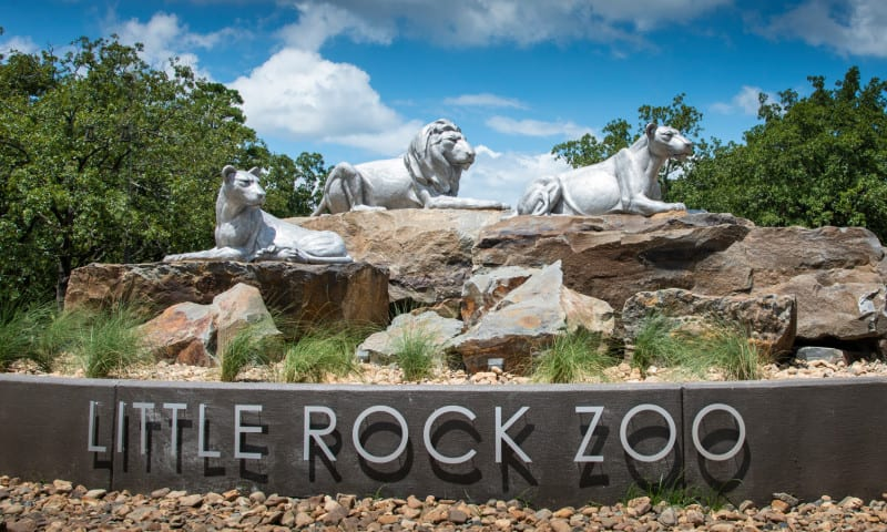 little-rock-zoo-things-to-do